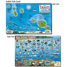 Palau Fish ID for Scuba Divers and Snorkelers