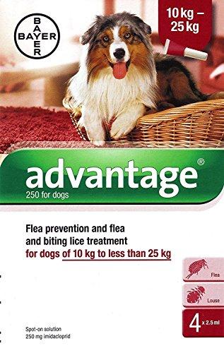 Advantage 250 pour chiens 10 - 25 kg 4 pipettes