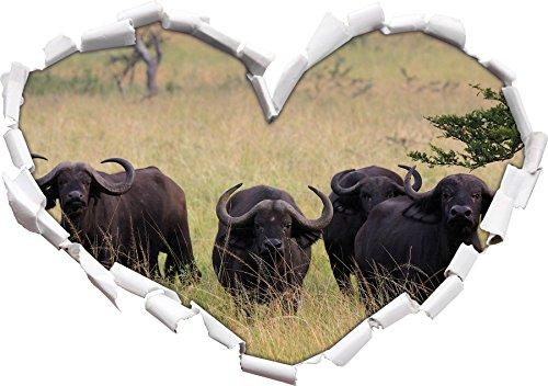 Vigile africano a forma di cuore Buffalo