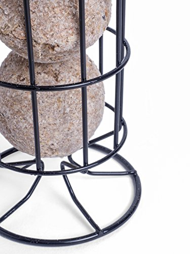 Petface 70040DS1 LokTop Squirrel Proof Fat Ball Feeder, Multi-Colour, 18.5x18.5x29 cm 6