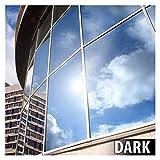 Buydecorativefilm BDF EXS15Exterior Window Film Privacy e Sole Control Argento 15, Scuro (76.2cm x 2.1m)