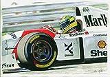 Ayrton Senna-Mclaren MP4, 8. Geburtstag