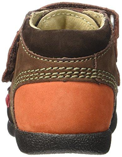 Kickers Babyscratch, Chaussures Premiers Pas Bébé Garçon Marron (Marron Foncé/Orange)