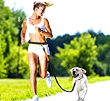 Pugga® elastische und flexible Jogging Hundeleine, haltbarer Doppel Dual Griff Bungee Gummi Leine, reflektierend, 1,6m bis zu 1,9m dehnbar, verstellbarer Hüftgurt (Passend 0,7m bis zu 1,2 m Taille) aus reißfestem Nylon für Hunde bis max. 45 kg, Farbe: grün und orange - 2