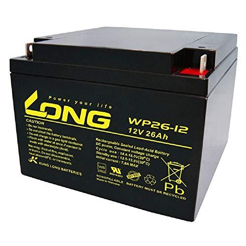 WSB Battery BLEIAKKU 12V 26Ah VDs BLEI-AKKU 12 V 26Ah AGM Volt KOMPATIBEL MIT 24Ah 28Ah 30Ah