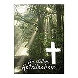 8 x Beileidskarte mit Umschlag / Motiv In stiller Anteilnahme Wald Lichtung / Beerdigung, Trauer, Sterbefall, Tod / Anteilnahme / Beileid