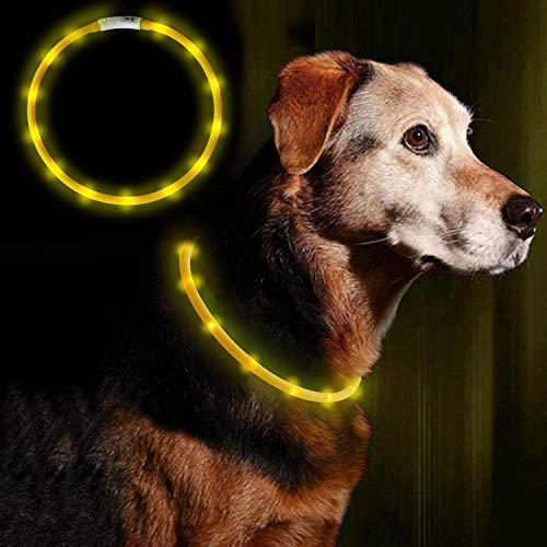 Anicoll LED Leuchthalsband Hunde Halsband USB wiederaufladbar - Längenverstellbarer Haustier Sicherheit Kragen für Hunde und Katzen- 3 Modus 12 Lichte Gelb -