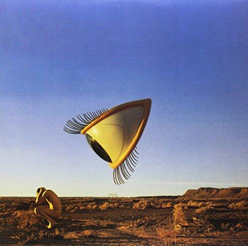 Bury the Hatchet [Vinyl LP]