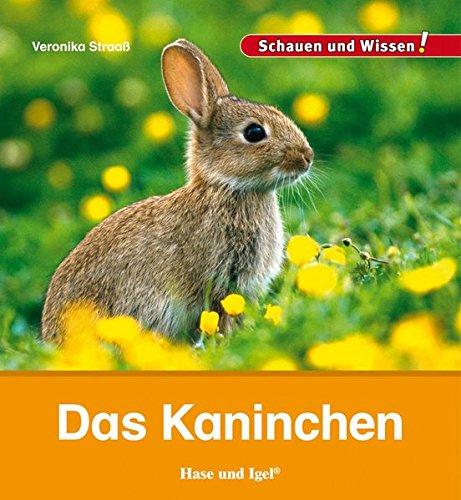 Das Kaninchen: Schauen und Wissen!