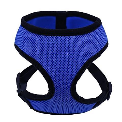 Costumes Mignon Chihuahua - XUJW-PET Harnais de sécurité pour chien de