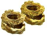 Namiba Terra 25709vantaggio pack, 2pezzi SP ciotola per cibo, con anello Deckel im Bundle, 11x 9x 5cm, colore: giallo