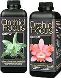 Set di fertilizzante per orchidee Focus crescita di fiori e jeweils 1ltr.