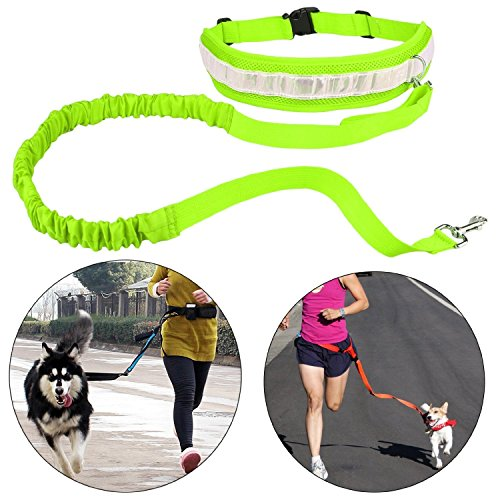 Cinghia Elastica Running dog Guinzaglio Piombo Sport Jogging Walking Collare