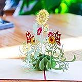 Paper Spiritz Biglietto Auguri Matrimonio 3D Biglietto Auguri Pop Up Biglietto Compleanno Cartolina Auguri San Valentino Biglietto Compleanno Pop Up Valentine's Day Thank You Birthday Card