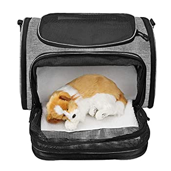 WLDOCA Sac de Transport Extensible pour Chat Petit Chien,Sac à Main Bandoulière pour Taille Medium pour Chats, Chiens,Sac à Dos Transport au Maximum 6.5kg Permis au Avion Voiture Train Voyage