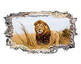 tekkdesigns k101Löwe Tiger Safari Zoo Tier Wand Aufkleber 3D Poster Art Aufkleber Vinyl Zimmer (Medium (52x 30cm))