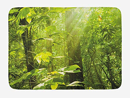 JIEKEIO Nature Bath Mat, Forest with Sunray Foliage Leaf Branches Woodland Eco Jungle Misty Picture, Plush Bathroom Decor Mat with Non Slip Backing, 23.6 W X 15.7 W Inches, Lime Green Brown Misty Leaf