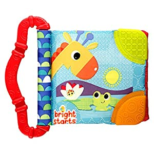 Bright Starts Teethe and Read (colours may vary) 8