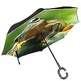 ALAZA Cute Verde Rana de árbol Hojas diseño Doble Capa Resistente al Viento Reverse Paraguas
