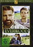 Everwood - 2. Staffel [6 DVDs]