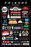 Friends Infographic Poster Print, 61x92
