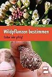Wildpflanzen bestimmen: Essbar oder giftig? - Johannes Vogel