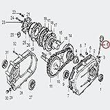 Parte di ricambio per motori a benzina oelbadkupplung con 6,5–13PS oelmessstab con o ring