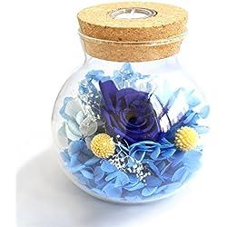 [nueva versión 2017] Havenfly artesanal preservado flores Rose Decor con vidrio en forma de manzana-mejor regalo para el día de San Valentín, día de la madre, cumpleaños (azul)