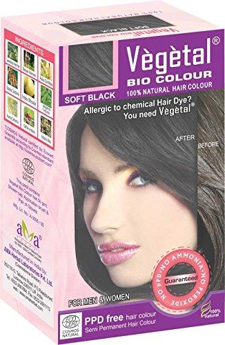 Vegetal bio colour - Soft Black 50 gm