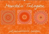 Mandala TrilogienAT-Version  (Wandkalender 2019 DIN A2 quer): Farbharmonische Mandala Collagen (Monatskalender, 14 Seiten )