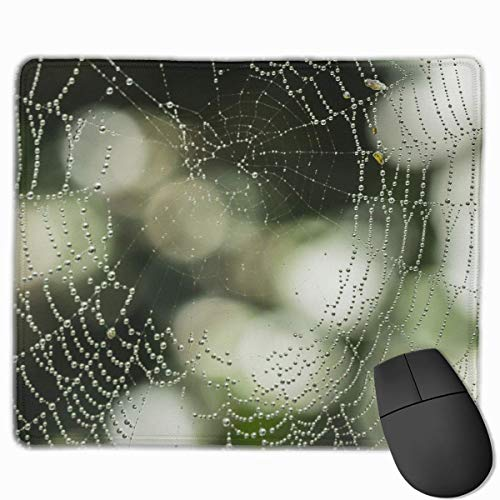 Preisvergleich Produktbild J5E7JYTE Mouse Pad Nature Dew Bokeh Rain Animal Spiderweb Web Rectangle Non-Slip 9.8in11.8 in Personalized Designs Gaming Rubber Mousepad Stitched Edges Mouse Mat