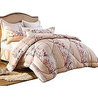 JIJIHAO beizi Die Klimaanlage ist durch den Kern mit der Decke bedeckt, im Winter mit der warmen Decke und im Herbst mit der Doppelten Decke (größe : 200 * 230cm(2.9kg))