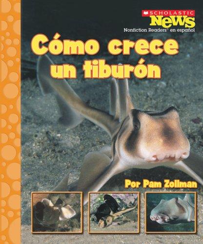 Cómo Crece Un Tiburon (Scholastic News Nonfiction Readers En Espanol) por Pam Zollman