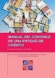Introducción a la contabilidad de un banco (Circular del Banco de España) (MANUAL DEL CONTABLE DE...