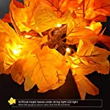 EisEyen Herbstgirlande mit 30 Lichtern Herbst Blättergirlande, Halloween Lichter,Batteriebetriebene, perfekte Dekoration für Herbst und Thanksgiving Decor(Warmweiß)