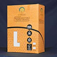 Biodegradable Paper straw (6mm)