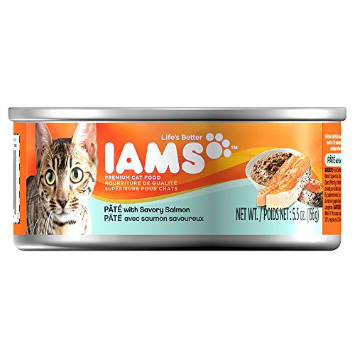wilson-pet-supply-inc-proactive-health-cat-food-salmon-p-t-55-oz-can