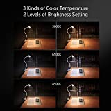 from CeSunlight CeSunlight Clamp Desk Lamp, Clip on Reading Light, 3000-6500K Adjustable Color Temperature, 6 Illumination Modes, 10 Led Beads, AC Adapter and USB Cord Included White )