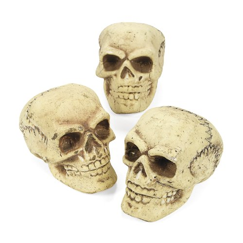 cama24com Halloween Totenköpfe Schädel Totenkopf aus Styropor 3 Stück Palandi®