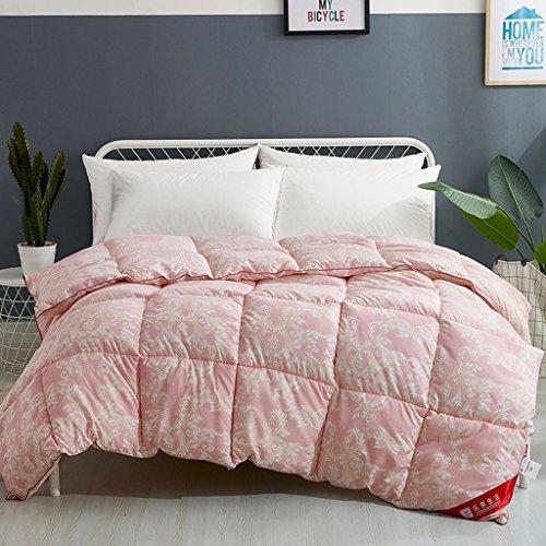 MMM L'automne et l'hiver Quilt Core Student Dortoir Double Thicker Gardez au chaud la literie d'hiver (taille : 200 * 230cm(3kg))