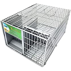 Aiya Cage de Trappe Animale Facile à Placer Le piège Humain pour Les Lapins Chats et la Faune de Taille Semblable appropriée à l'intérieur et à l'extérieur écurie de Fil de Trappe Animale piège