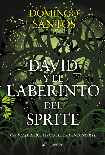 david-y-el-laberinto-del-sprite