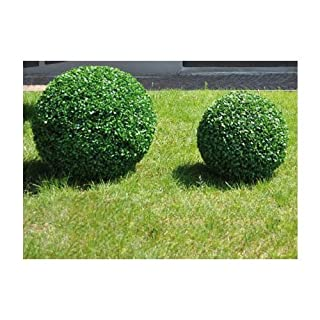 Sphere von synthetischen Buchsbaum Ø28 Cm Papillon Farbe Grün