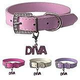 Hundehalsband mit gratis Diva Charm aus Leder in den Größen XS, Small, Medium und Large (XS, Pink)