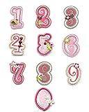 Applikation Flicken Bügelbild Aufnäher Stickbild Zum Aufbügeln Name ABC Rosa Buchstabe Buchstabe Alphabet (10pcs Zahlen)