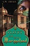 Flucht aus dem Morgenland: Frauenroman