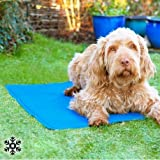 s/m tappetino refrigerante per cani pet Prior, 40x 50cm
