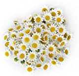 AKORD Artificial Gerbera Daisy Flower Heads for DIY Wedding Party, Plastic, White, 100-Piece