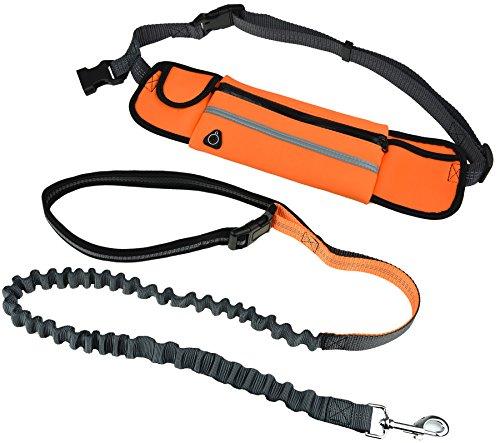 paw-lifestylesr-neueroffnungsangebote-elastische-und-flexible-jogging-hundeleine-bungee-gummi-leine-