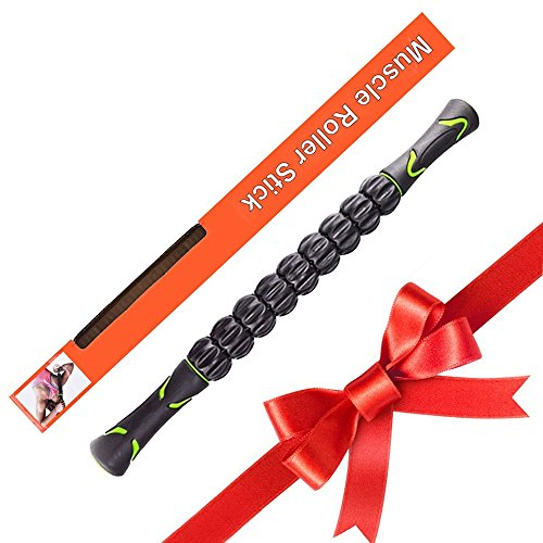 Werded Muscle Roller – Exercise Balls & Accessories